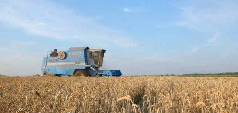 Кина је постала главни увозник украјинског жита 2020. године